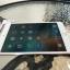 iPad Mini4 Wifi 16 Gb Gold สีทอง thumbnail 6