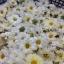 ชาดอกเก๊กฮวยออแกนิค (ถุง 30 กรัม) thumbnail 6