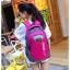 NL06 กระเป๋าเดินทาง สีกรมท่า ขนาดจุสัมภาระ 28 ลิตร thumbnail 29