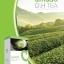 Amado D.H Tea อมาโด้ ชาเขียว (15ซอง) ชาเขียว ชาลดความดัน ชาลดเบาหวาน thumbnail 2