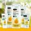 เจลน้ำผึ้งมหัศจรรย์สำหรับทาแผล Comvita MediHoney Antibacterial Wound Gel with Manuka Honey (25g) thumbnail 6