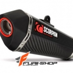 Scorpion slip-on For Ninja250 2009-2013