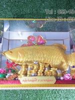 ของขวัญปีใหม่ ปลามังกรสีทองกรอบกระจก