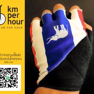 ถุงมือช้างไทย