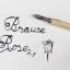 หัวปากกา Brause Rose (Writing & Calligraphy) thumbnail 2