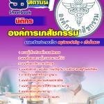 แนวข้อสอบ นิติกร องค์การเภสัชกรรม(PDF file)