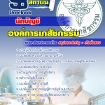 แนวข้อสอบนักบัญชี องค์การเภสัชกรรม(PDF file)