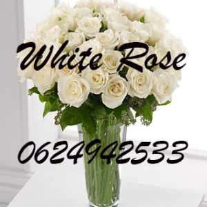 White rose shop
