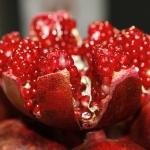 ที่มาของสารสกัดทับทิม สารสกัดธรรมชาติในอาหารเสริมผู้สูงอายุ Senior Balance 50+