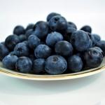 ที่มาของสารสกัดบลูเบอร์รี่ สารสกัดธรรมชาติในอาหารเสริมผู้สูงอายุ Senior balance 50+