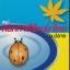 สรุปหลักการใช้ภาษาไทย ม.ปลาย thumbnail 1