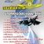 [[NEW]]แนวข้อสอบนายทหารเวชระเบียนสถิติ กองทัพอากาศ Line:topsheet1 thumbnail 1