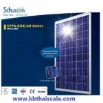 แผงโซล่าเซลล์ Schutten Solar Cell Poly-crystalline module 250W มาตราฐาน TUV IEC CE แผงโซล่าเซลล์ อายุการใช้งานนาน 25 ปี