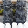 สิงโตปักกิ่งคู่ แกะสลัก หินอ่อน สูง 100เซนติเมตร หินสีดำ