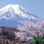 มนต์เสน่ห์โตเกียว 5 วัน 3 คืน เดือน ธ.ค.58