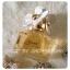 น้ำหอม Marc Jacobs Daisy EDT for Women 100 ML. thumbnail 1