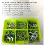 แหวนอีแปะ, แหวนสปริง (Washers, Spring Washers)