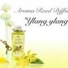 """THAI FLOWER YLANG YLANG"" Aroma Reed Diffuser / น้ำมันหอมระเหยปรับอากาศ กลิ่นดอกกระดังงาไทย"