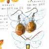 ++ ต่างหู Crazy Lace Agate เครซี่เลซอาเกต ทรงรูปไข่ ++