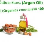 Argan Oil น้ำมันอาร์กอน 100% จากธรรมชาติ