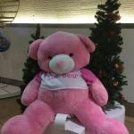 ตุ๊กตาหมี ยักษ์เบิ้ม 2 เมตร