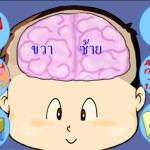 """วิธีเพิ่มพลังศักยภาพสมองด้วยเทคนิค """"แผนผังความคิด"""""""