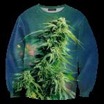 Pre-Order เสื้อยืดพิมพ์ลาย MR.GUGU & Miss GO : Ganja sweater