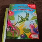 my Busy books all about bugs