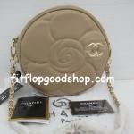 กระเป๋าแบรนด์เนม  Chanel  No.CH124