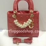 กระเป๋าแบรนด์เนม  Dior  No.DI009