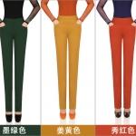 Pre-Order กางเกงผู้หญิงทำงาน เอวสูง ขาตรง ผ้าฝ้าย มี 10 สี แฟชั่นเกาหลีกางเกงขายาวห้าส่วน