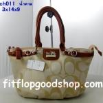 กระเป๋าแบรนด์เนม  Coach  No.CO013