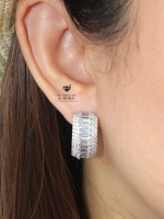 พร้อมส่ง ~ A~Dora Earrings Full Set Luxury AAA Cubic Zirconia