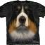 Pre.เสื้อยืดพิมพ์ลาย3D The Mountain T-shirt : Bernese Mountain Dog Face thumbnail 1