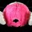 หมวก ARALE อาราเล่ รุ่นขนปุย สีชมพู ม่วง ขาว 3 โทน thumbnail 3