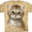 Pre.เสื้อยืดพิมพ์ลาย3D The Mountain T-shirt : Brown Striped Kitten thumbnail 1
