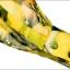 Pre-Order เสื้อผ้าแฟชั่นผู้หญิง คอผูก แขนยาว พิมพ์ลายมะนาว ผ้าชีฟองเนื้อดี สีเหลือง thumbnail 8