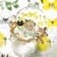 ++ Citrine ซีทริน สีเหลืองทอง รูปทรงอิสระ ร้อยโดยใช้เอ็นยืดพร้อมตัวคั่นรูปหอย ++ thumbnail 7