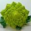 Broccoli บล็อคโคลี่ thumbnail 2