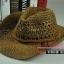 (Pre-order) หมวกปีกกว้าง หมวกสาน ป้องกันแดด สำหรับกิจกรรมกลางแจ้ง เที่ยวทะเล สีกาแฟ thumbnail 1