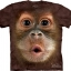 Pre.เสื้อยืดพิมพ์ลาย3D The Mountain T-shirt : Big Face Baby Orangutan thumbnail 1