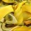 Pre-Order เสื้อผ้าแฟชั่นผู้หญิง คอผูก แขนยาว พิมพ์ลายมะนาว ผ้าชีฟองเนื้อดี สีเหลือง thumbnail 7