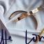พร้อมส่ง ~ Cartier Diamond Bracelet กำไลข้อมือหน้าโลโก้คาร์เทีย thumbnail 15