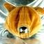 หมวก Bear หูหมี ขนสัตว์นุ่มๆ สีน้ำตาล thumbnail 4