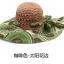 Pre-order หมวกปีกกว้างแฟชั่นฤดูร้อน กันแดด กันแสงยูวี สวยหวานเรียบหรู ดูดี สีน้ำตาลลายเขียว thumbnail 1