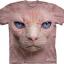 Pre.เสื้อยืดพิมพ์ลาย3D The Mountain T-shirt : Hairless Pussycat Face thumbnail 1