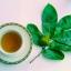 ใบทุเรียนเทศ100% ในซองชา 7กรัม 30ซองชา (210 กรัม) (Pure Air Dried Soursop Leaves in Tea Bag 7Grams x30 =210Grams) thumbnail 3