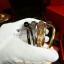 พร้อมส่ง ~ Cartier Bracelet กำไลตะปูงานไฮเอนจิวเวอรี่ รุ่น Juste un clou bracelet thumbnail 5