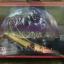 จิ๊กซอว์เรืองแสง 1200 ชิ้น odyssy of the earth thumbnail 1