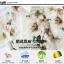 Pre-order เสื้อเชิ้ตแขนยาว เสื้อทำงานแขนยาว สีขาวพิมพ์ลายดอกไม้ แฟชั่นสไตล์เกาหลีปี 2015 thumbnail 8